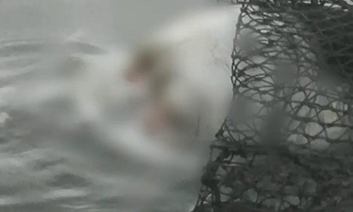 ปิดคดีซากศีรษะลอยน้ำ ที่แท้เป็นสาวใหญ่ซึมเศร้า โดดน้ำแล้วใบพัดเรือตัด