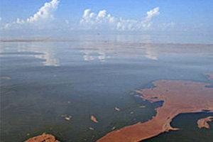 น้ำมันรั่วลงอ่าวเม็กซิโกทำให้ทะเลไม่สดใสไปอีกหลายปี
