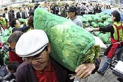 ช็อก!! กิมจิขาดตลาดเกาหลี