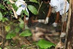 สาวโดนฆ่าโหด!! หมกป่าโบกปูนทับ