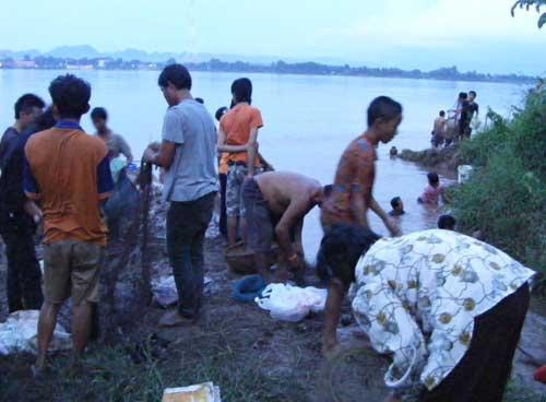 ชาวบ้านนครพนมรุมจับปลาดุกนับหมื่นตัวริมโขง