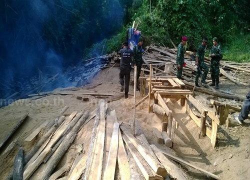 คนร้ายลักลอบตัดไม้ป่าสงวนแห่งชาติลำปาง