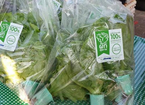 ผวจ.อุดรฯเปิดตลาดร่มเขียวจำหน่ายสินค้าเกษตร