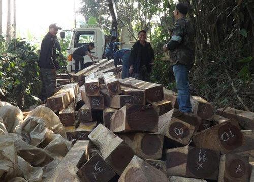 จนท.ป่าไม้แพร่ จับไม้เถื่อนได้ 138 ท่อน