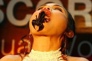 ราชินีแมงป่องคว้าสถิติโลกได้สำเร็จ อยู่กับแมงป่อง 5,000 ตัว