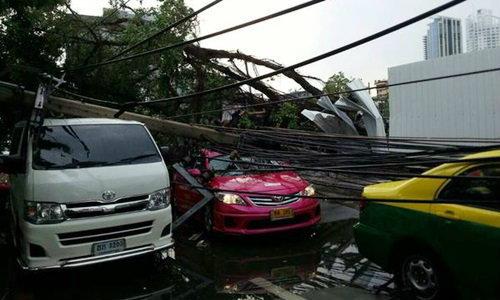 พายุฝนถล่มกรุง ต้นไม้หน้า สตช.ล้มขวางรถไฟฟ้า BTS