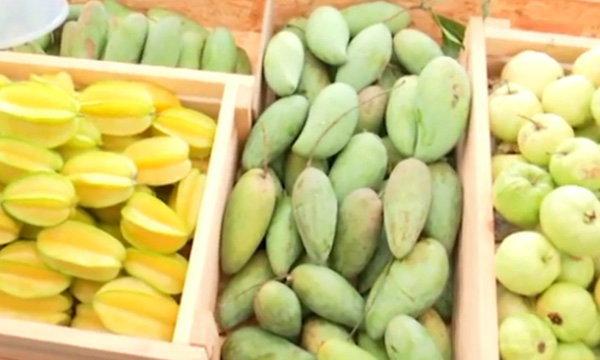 งานเทศกาลผักผลไม้ไทยคุณภาพ