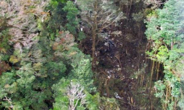 พบแล้วซากไตรกานาแอร์ตกป่าปาปัว #TGN267 พร้อมเหยื่อ 54 ศพ