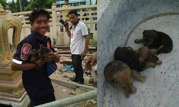 ใจหล่อมาก! หนุ่มกู้ภัยเป็นใบ้หูหนวก ช่วยลูกสุนัขจากซากโบสถ์ถล่ม