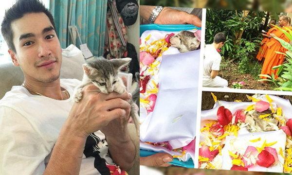 ณเดชน์ เศร้า นิมนต์พระทำบุญฝังลูกแมวป่วยตาย
