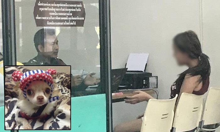 คุก 2 เดือน สาวประเภทสองโยนหมาจากชั้น 5 ไม่รอลงอาญา