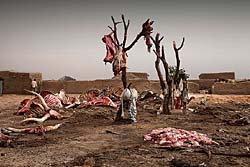 ไทม์ รวม10ภาพเหตุการณ์ชวนตะลึงปี2010