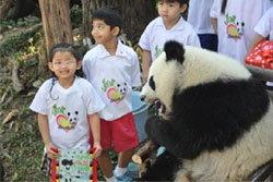 สวนสัตว์เชียงใหม่จัดงานวันเกิด หลินปิง
