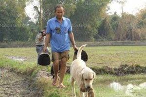 หมาแสนรู้ชอบช่วยคนจมน้ำ ช่วยเจ้านายไม่ห่วงชีพตัวเอง