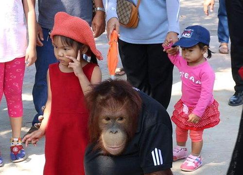 คนแห่เที่ยวสวนสัตว์ขอนแก่นช่วงปีใหม่คึกคัก