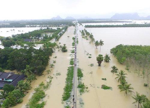 น้ำท่วมเมืองคอนรฟท.เปิดเดินรถสายใต้ถึงสุราษฎร์ฯ