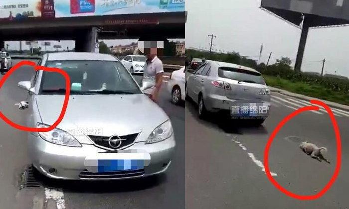 ชาวเน็ตจีนเดือด ล่าตัวชายจับสุนัขผูกท้ายรถ ขับลากตามถนน