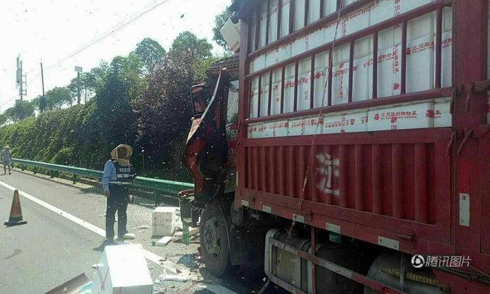 รถบรรทุกชนกัน ฝูงผึ้ง 200 ลัง แตกฮือต่อยวุ่นกลางทางด่วนที่จีน