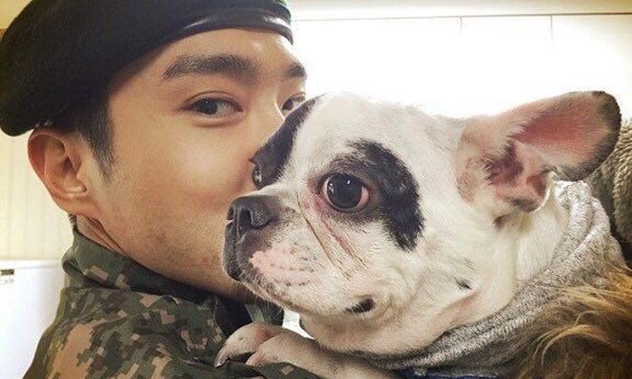 """""""ชีวอน"""" โดนวิจารณ์ขอโทษช้า สุนัขที่เลี้ยงกัดเพื่อนบ้านถึงตาย"""