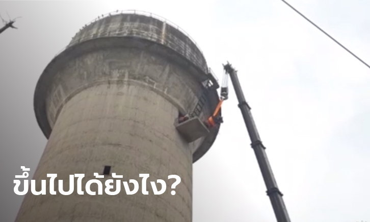 วัวปีนบันไดหอประปาสูง 60 เมตร แต่ลงไม่ได้จนร้องโหยหวน กู้ภัยต้องใช้เครนช่วย