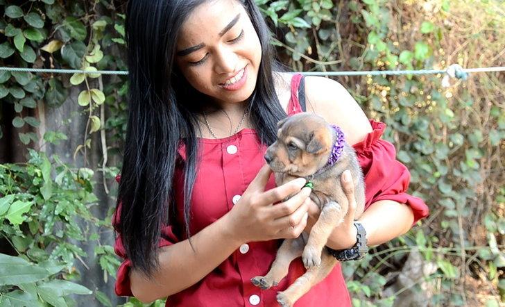 นางสาวศศิวิมล ม่วงทอง อายุ 30 ปี เจ้าของสุนัขชื่อมีบุญ
