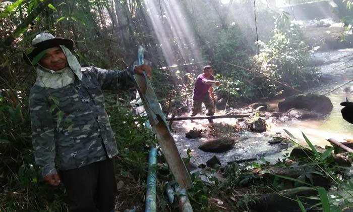 """""""ช้างป่า"""" บุกทำลายพืชไร่ชาวบ้าน เดือดร้อนหนัก-ต้องเฝ้าระวังตลอด 24 ชั่วโมง"""