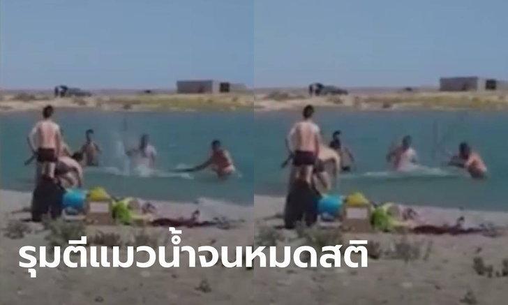 สะเทือนใจ! นักท่องเที่ยวคาซัคสถาน ไล่ทุบแมวน้ำจนหมดสติ ให้เด็กถ่ายรูปคู่ (มีคลิป)