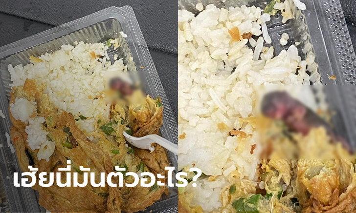 """สาวเจอ """"ลูกหนู"""" ในข้าวไข่เจียวที่กินไปแล้วครึ่งกล่อง แจงดราม่าคนหาว่าแต่งเรื่อง"""