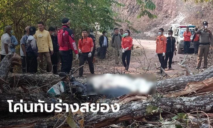 สองผัวเมียขี่มอเตอร์ไซค์ผ่านไฟป่า ต้นไม้ใหญ่หักโค่นทับร่างเมียดับคาที่ ผัวเจ็บหนัก
