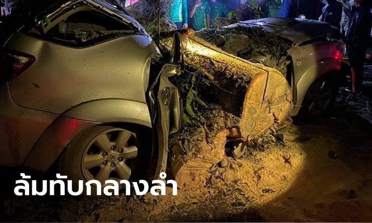 พายุถล่ม อ.อุ้มผาง 3 ชีวิตขับรถฝ่าฝน เจอต้นไม้ใหญ่ล้มทับกลางลำ ดับสลดทั้งคันรถ