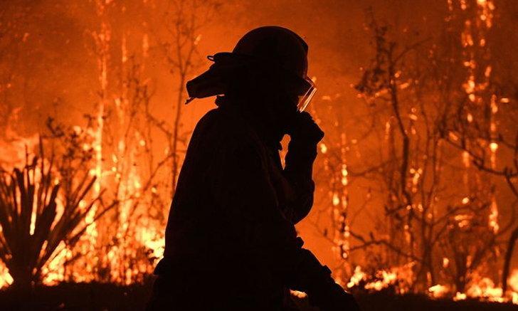 """""""ไฟป่าออสเตรเลีย""""ทวีความรุนแรงใน 4 รัฐ สัตว์ป่าตายแล้วเกือบ 500 ล้านตัว"""