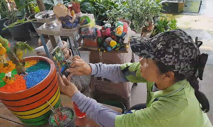 เลข 51 โผล่ที่ต้นหมากเหลืองหงอนพญานาค เจ้าของร้านขายต้นไม้ฝันเห็นชายแก่เอาเงินมาให้
