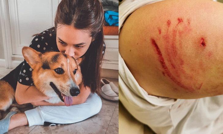 """""""มิน พีชญา"""" โกรธจนตัวสั่น แม่บ้านและเจ้าตูบแสนรักถูกสุนัขปริศนากัดจนเลือดอาบ"""