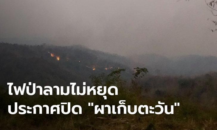 """ประกาศปิด """"ผาเก็บตะวัน"""" หลังไฟป่าลามไม่หยุด ควันพิษลอยปกคลุมทั่วพื้นที่"""