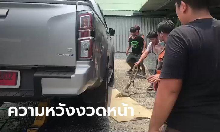 คอหวยจับตา! รองผู้การฯ ตำรวจฉะเชิงเทราเจองูเหลือมผัวเมียมุดเข้าใต้ท้องรถกระบะป้ายแดง