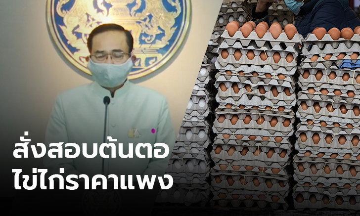 นายกฯ สั่งตรวจสอบ หาต้นตอราคาไข่ไก่แพง