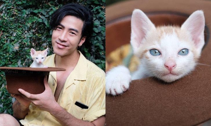 """""""โย่ง อาร์มแชร์"""" อัปเดตภาพ """"เจ้าส้มหยุด"""" ลูกแมวที่เจอริมถนน แฟนคลับแห่รอเลขตอม่อ"""