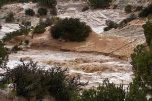 น้ำป่าลำปางหลากพัดบ้านเสียหายกว่า100หลัง