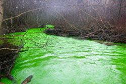 ตะลึง! พบแม่น้ำกลายเป็นสีเขียว