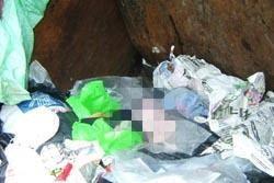 ผงะ! พบศพเด็กทารกทิ้งกองขยะพัทยา