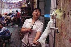 เวียดนามแห่กินเนื้อแมว ฉลองตรุษจีน