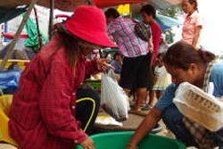 สวนกระแส! ชาวไทย-เขมรแห่ขายอึ่งอ่าง ไม่สนข่าวความขัดแย้ง