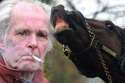 อึ้ง! ตำรวจจับเฒ่าอังกฤษ  เล่นเซ็กส์วิตถารม้า