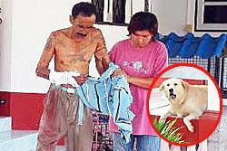 หมาโกลเด้นกัดเจ้าของดับ แค้นถูกเตะตอนเด็ก