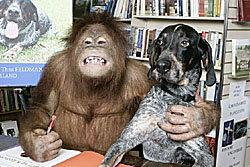 ดังจริง! เพื่อนซี้ต่างสายพันธุ์ลิงกับสุนัขที่สหรัฐ