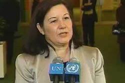 UNSC แนะไทย-เขมรเจรจา หยุดยิงถาวร