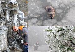 อากาศหนาวเหน็บ หิมะขาวโพลนที่จีน