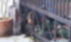 ร่มชูชีพไม่กาง ทหารดิ่งพสุธากระแทกพื้นดับ