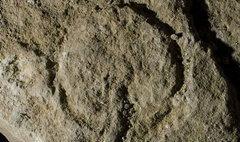 ทึ่ง! พบสื่อลามกเก่าแก่ที่สุดในประวัติศาสตร์