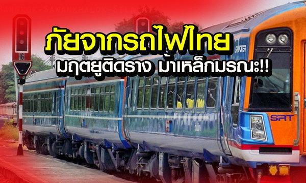 มฤตยูติดราง ม้าเหล็กมรณะ ภัยจากรถไฟไทย